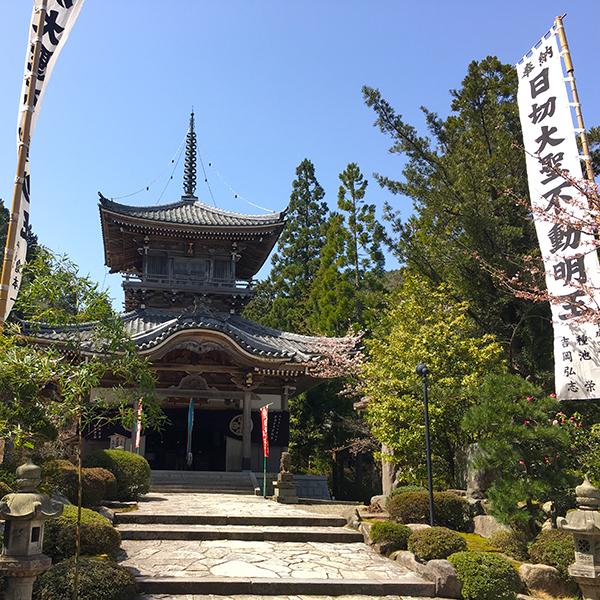 関西花の寺「如意寺」